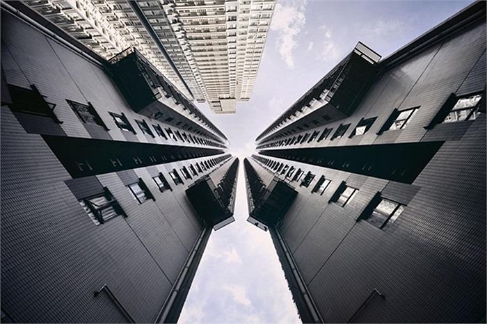 Cảm hứng của anh ra đời khi nhìn và nhận thấy những tòa nhà như đang trong cuộc 'đua tới bầu trời'