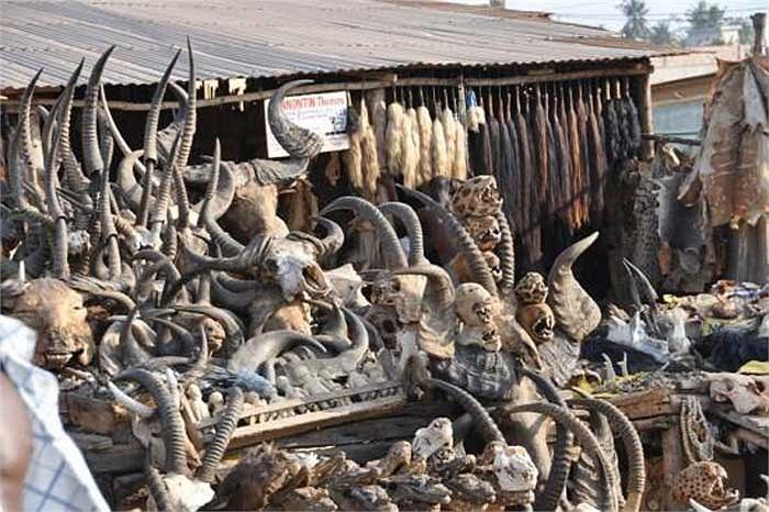 Đây có thể coi là khu chợ kỳ quái và đáng sợ nhất trên thế giới.