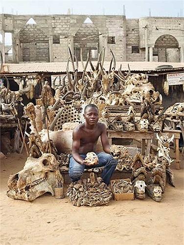 Và một khu chợ chuyên cung cấp những vật dụng làm phép cho các thầy phù thủy đã mọc lên ngay giữa thủ đô Lome của đất nước Togo.