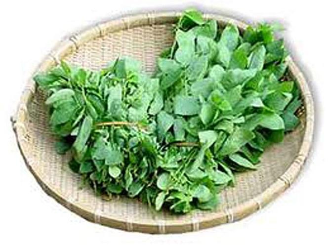 Mọi người đều biết rằng ăn rau rất quan trọng nhưng quan trọng hơn phải biết mỗi loại rau giúp ích cho bạn thế nào. Rau lá xanh đậm có thể làm giảm loãng xương và giúp bạn có được thị lực tốt hơn.