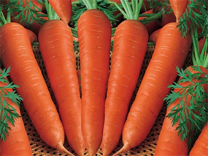 Cà rốt và