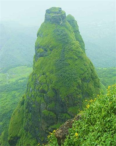 Đỉnh núi này không có nhiều cây cối do được cấu tạo hoàn toàn bằng đá, ngay cả vào mùa xuân cũng chỉ có những loài cây bụi thấp mới mọc nổi.