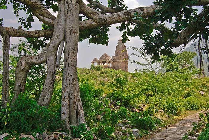 Bang Rajasthan của Ấn Độ có một thành phố cổ đã bị bỏ hoang từ hơn 400 năm trước, đó là thành phố Bhangarh.