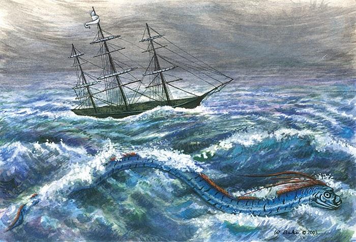 Kỷ lục từng được Sách Guinnes ghi nhận về chiều dài của loài cá này là 17m.