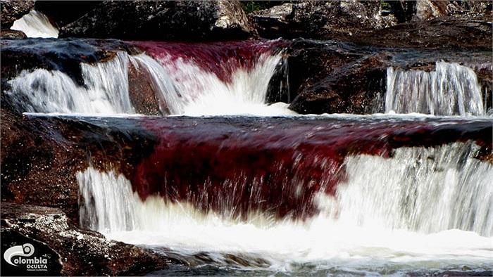 Những tảng đá bên sông có niên đại 1,2 tỷ năm, được coi là lâu đời nhất trên thế giới.