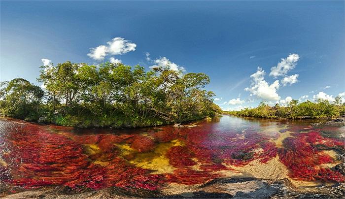 Có chiều dài 100 km và cũng không quá rộng, dòng sông đã được một nhà thám hiểm khám phá từ năm 1980.