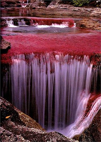 Dòng sông càng trở nên siêu thực trong thời điểm giao thoa giữa mùa mưa và mùa thu.