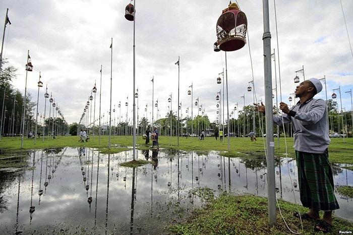 Lễ hội thi chim hót ở huyện Yala, cách Bangkok, Thái Lan 100km về phía Nam