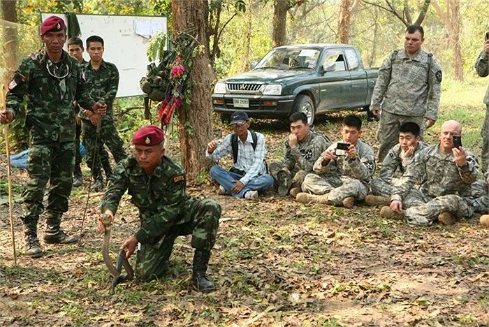 Lính Thái Lan thể hiện khả năng khống chế rắn hổ mang trong rừng rậm