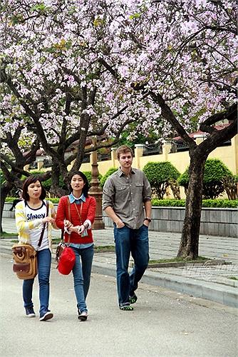 Con đường hoa ban thơ mộng hấp dẫn cả những bạn trẻ nước ngoài đang sinh sống, học tập tại Việt Nam