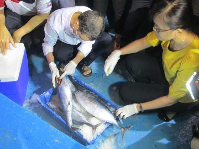 Cá được kiểm nghiệm ngay về chất lượng và cho phép bán ra thị trường - Ảnh: L.G