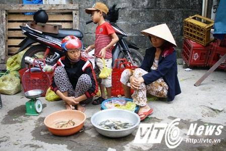 Nhiều tiểu thương bán cá biển và ngư dân đang lao đao trước tình trạng cá chết hàng loạt nghi do nhiễm độc và người dùng quay lưng với cả biển.