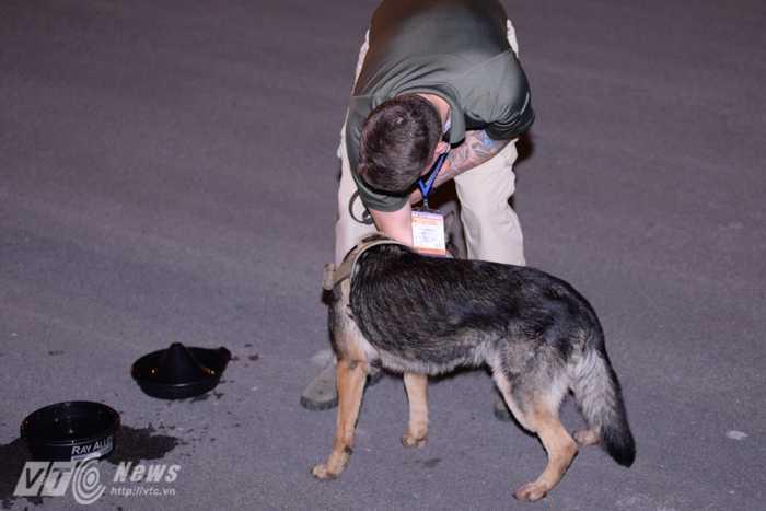 Nhân viên an ninh dắt chó nghiệp vụ đánh hơi xung quanh khu vực máy bay hạ cánh - Ảnh: Tùng Đinh