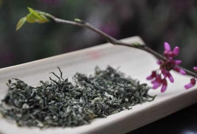 Trà Đại Hồng Bào là một trong những loại trà đắt nhất thế giới. (Nguồn: Sina)