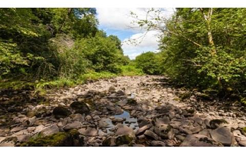 Nhiều đoạn của con sông đã bị rút cạn.