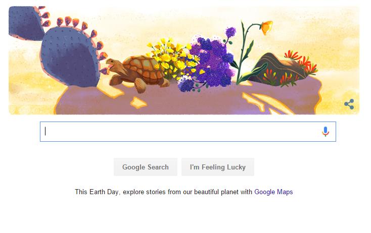 Loài rùa xuất hiện trong doodle thứ 5 của Google ngày 22/4