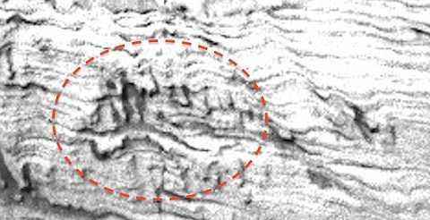 Thợ săn UFO nhận diện hình ảnh về một người đàn ông đang chạy và một con rắn khắc trên đá ở sao Hỏa. Ảnh The Mirror