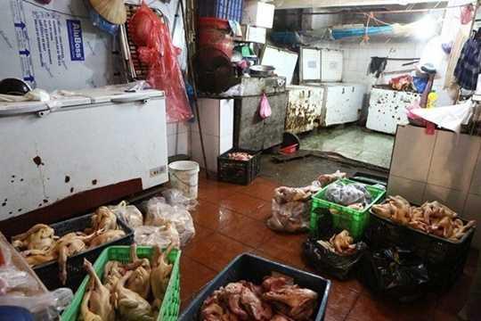 Thậm chí, cơ sở này còn bơm nước vào từng con gà nhằm tăng trọng lượng và làm cho da, bắp gà căng lên để bán cho người tiêu dùng. Toàn bộ số gà được chế biến trên nền nhà bẩn, nhớp nháp, không đảm bảo vệ sinh. Ảnh: Zing.