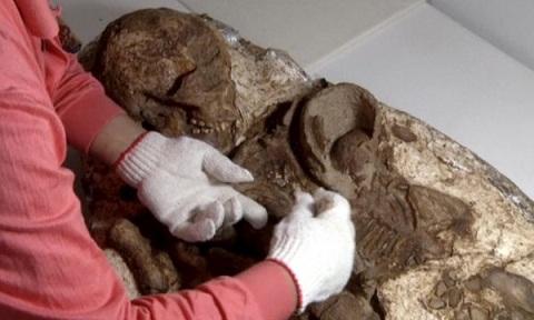 Theo các nhà khảo cổ, bộ xương này đã 4.800 tuổi. Ảnh Huffingtonpost