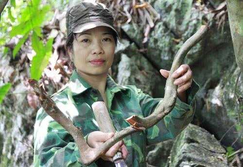 Chỉ tính riêng ở đất Sơn La, nữ lang xinh đẹp Hoàng Tuyết Minh đã giúp cho cả trăm gia đình tìm được niềm vui con cái.