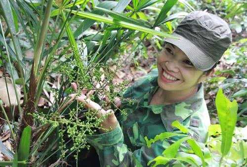 Theo chị Minh, hầu hết những cây thuốc bổ dương đều nằm trong rừng già, trên các dãy núi đá, là những loài cây bám vào đá để sống.