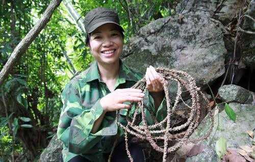 Theo chị Minh, đây là cây thuốc cường dương cực mạnh và bí truyền trong gia đình nhà chị.