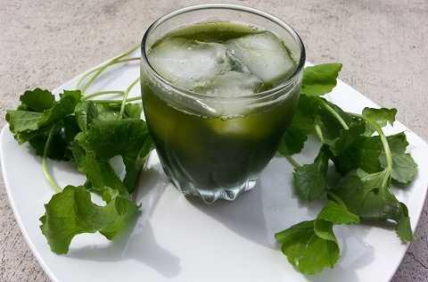 Uống nước rau má nhiều quá có thể bị nhức đầu, thậm chí mất ý thức thoáng qua