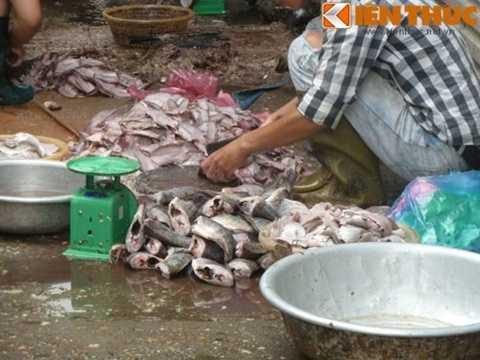 Để làm món bún cá bẩn, nguyên liệu cá được tận dụng từ cá ươn thối còn sót lại do bán ế ở các chợ đầu mối. Tiểu thương sẽ gom lại rồi cất công ngồi lóc thịt ra sau đó rán giòn lên và phân phối về hầu hết cửa hàng bán bún cá vỉa hè, kém uy tín. Ảnh: Lê Phương.