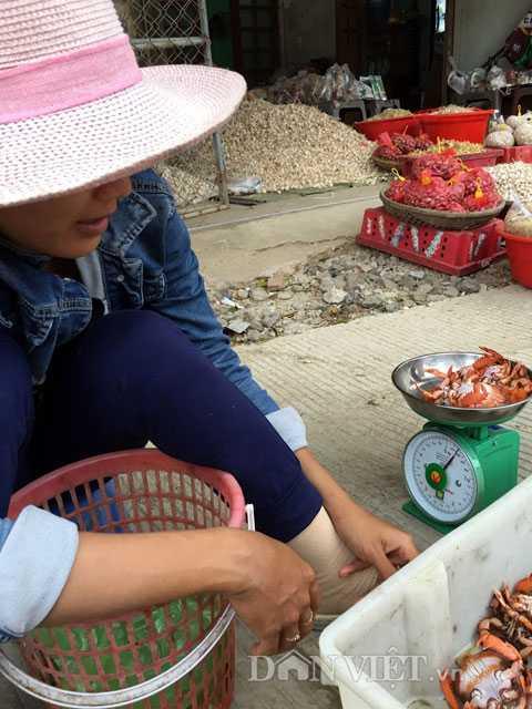 Cân cua bán cho khách tại cầu cảng huyện đảo Lý Sơn