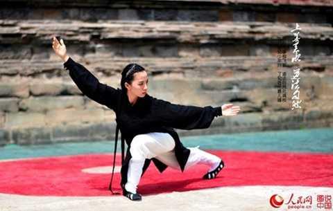 Có nhiều giả thuyết về sự ra đời Thái Cực Quyền, nhưng phổ biến nhất là quan niệm môn võ ra đời khoảng 300 năm trước tại Trung Quốc.