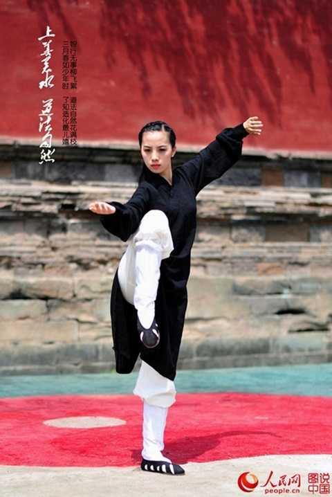 Từ đó đến nay, môn võ thuật này đã được lan truyền ra nhiều quốc gia. Với cách luyện tập nhẹ nhàng nhưng đúng phương pháp, người tập thái cực quyền thu được rất nhiều tác dụng.