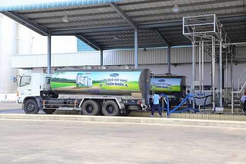 Nhà máy đang tiếp nhận sữa tươi nguyên liệu từ các xe bồn chuyên dụng, chuẩn bị đưa ngay vào sản xuất