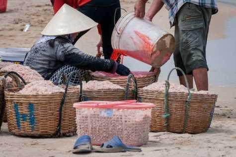 Việc nhuộm ruốc được cho là diễn ra công khai ngay trên bờ biển Gành Đỏ, phường Xuân Đài