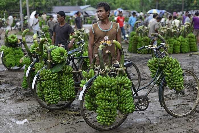 Một góc chợ chuối Darangiri ở quận Goalpara, Assam, Ấn Độ