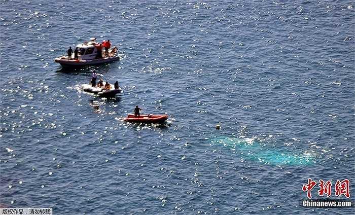 Nhiêu người may mắn sống sót vì bơi được vào bờ