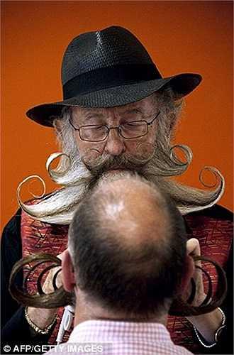 Bộ râu được tạo dáng độc đáo và công phu
