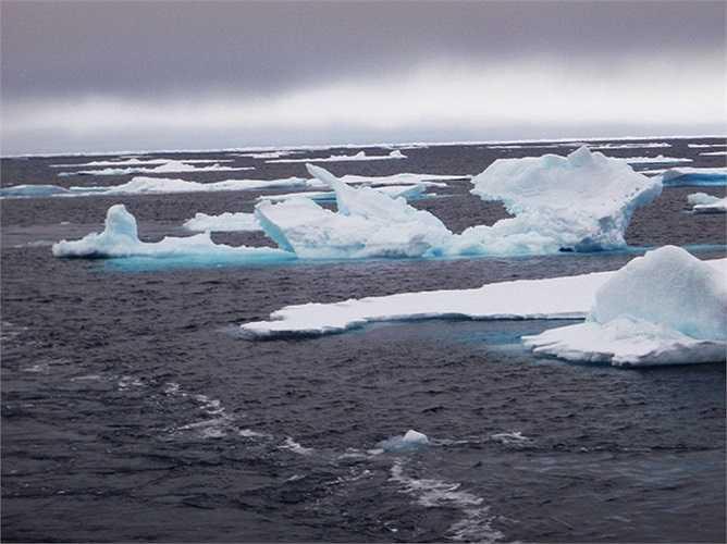 Băng trôi ở Bắc Cực có thể trở thành 'tai mắt' của Lầu Năm Góc nếu như được gắn cảm biến theo dự án mới nhất của DARPA