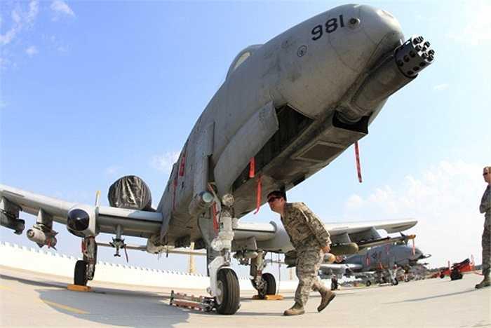 Các kỹ thuật viên kiểm tra Thần sấm A-10 trước khi cất cánh trong cuộc diễn tập chung giữa NATO và Cộng Hòa Séc