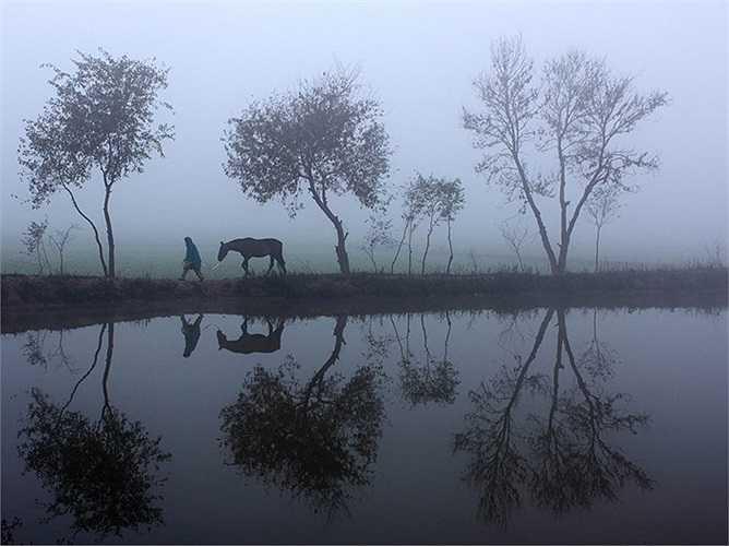 Mùa đông ở Sialkot, Punjab, Pakistan