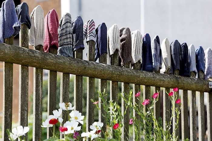 Những chiếc tất đủ màu được phơi trên bờ rào ở một trang trại trong thị trấn Heudorf am Bussen, Đức
