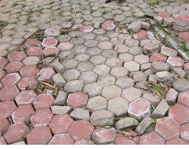 Nền gạch lát vỉa hè trước nhà đã bị bong bật ở nhiều nơi.