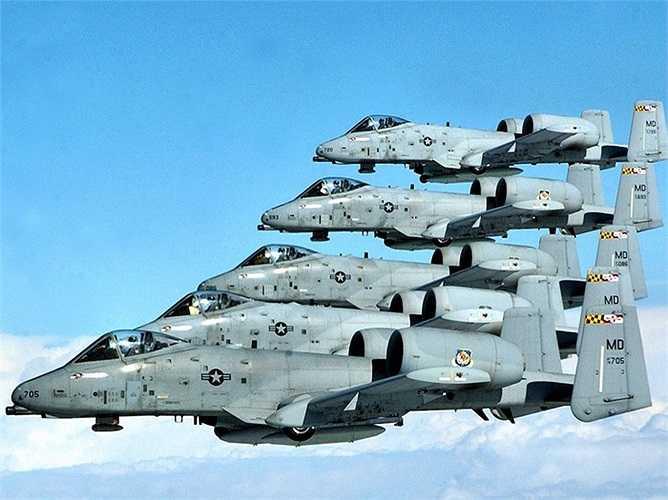 A-10 còn thường được gọi là 'Warthog' hoặc 'Hog' do những âm thanh của nó phát ra