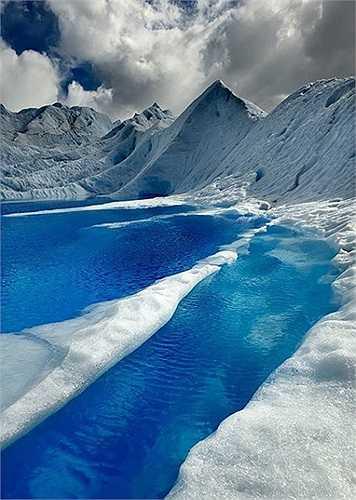 Động băng Glacier ở Chile có thể làm bất cứ sinh, động vật nào chết cóng
