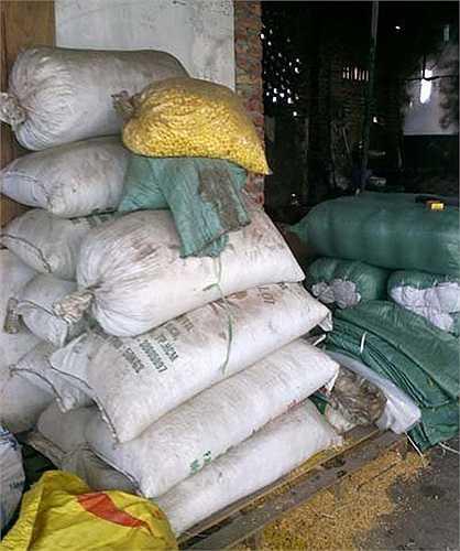 Công đoạn đầu tiên của ngô cay là luộc ngô hạt khô trong các thùng phi đựng đầy nước đường hoá học.