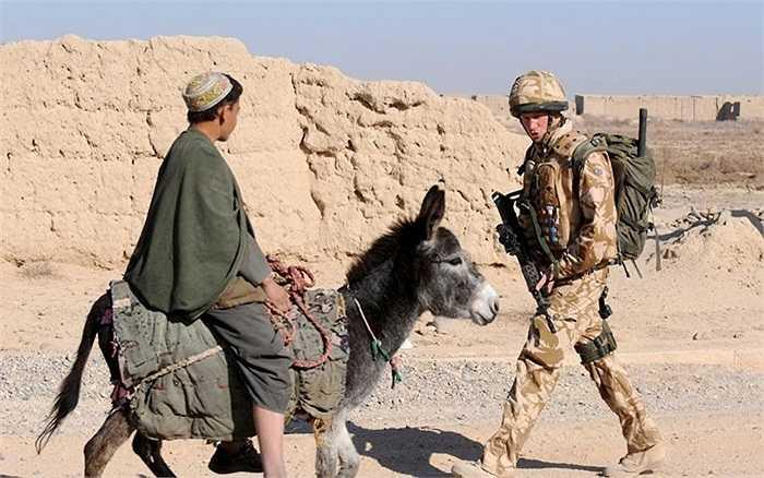 Những cuộc tuần tra đầu năm 2008 gần Căn cứ chuyển tiếp Delhi, tỉnh Helmand, Afghanistan