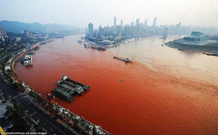 Con thuyền lướt giữa làn nước sông Dương Tử (bên trái) đổi màu so với nước sông Jialin (bên phải) cùng chảy qua thành phố Trùng Khánh.