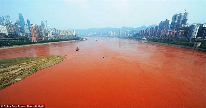 Sự chuyển màu của nước sông Dương Tử khiến các nhà chức trách thành phố Trùng Khánh lo ngại dòng sông có thể đang bị ô nhiễm.