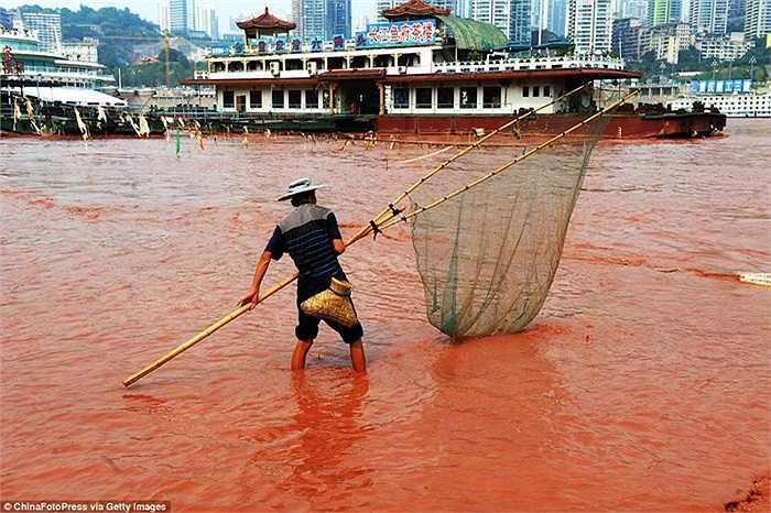 Người dân vớt cá trên sông Dương Tử.
