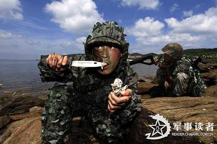 Nhóm binh lính ăn sinh vật hoang dã trong khi tập thích nghi điều kiện khắc nghiệt