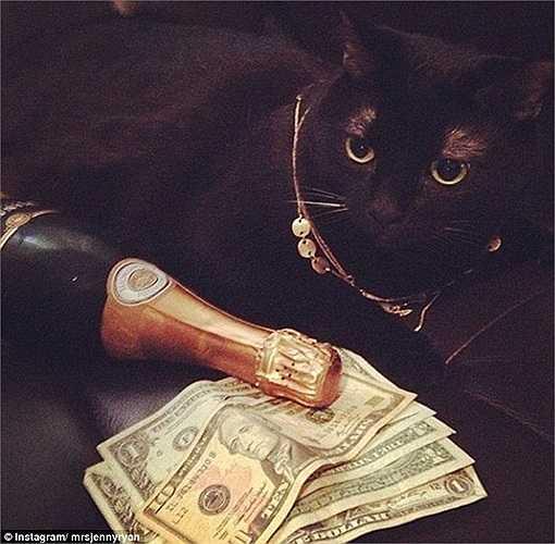 Trang sức, tiền bạc và rượu cao cấp bên cạnh mèo cưng - những thứ không thể thiếu với nhiều cậu ấm cô chiêu.
